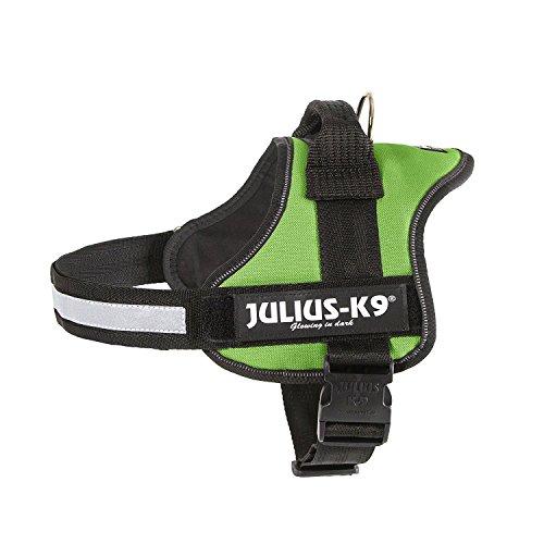 Julius-K9 Powerharness, mini-mini, kiwi