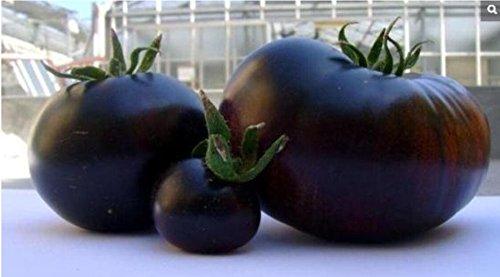 2000 PC/sac Graines de Tomate Noir graines de fruits végétales Rare alimenticios de haute qualité du été + 90% de germination plantadores Pot