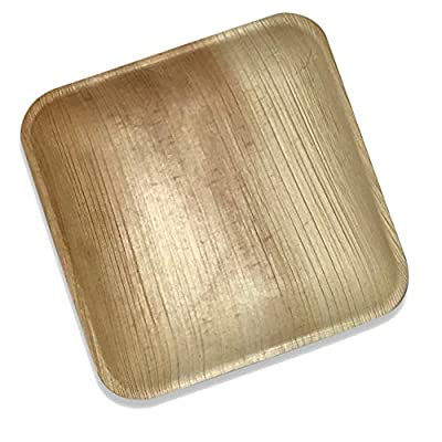 Palm Leaf Plates | Eco Friendly Disposable Dinnerware by Rustic Earthware | Compostable & Biodegradable Plates Made of 100% Natural Palm Leaves