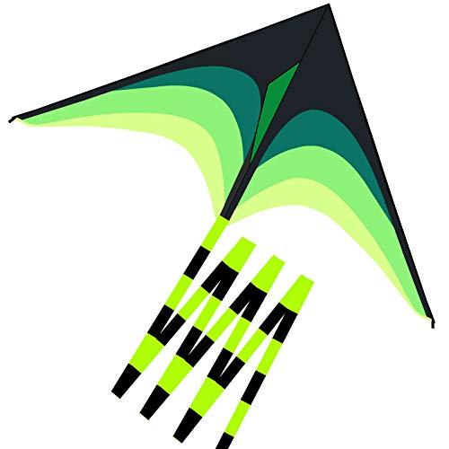 IXHJUU Polpo Aquilone Arcobaleno per Bambini - 2 Pezzi Grandissimo Aquilone Facile da Pilotare con Coda Lunga Spiaggia Aquilone (Prateria Aquilone)