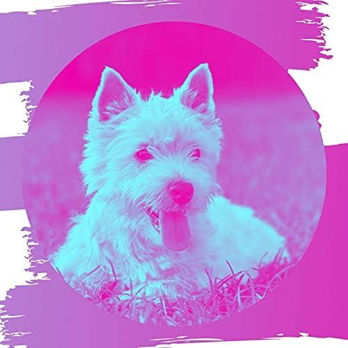 Bright Doggy Music