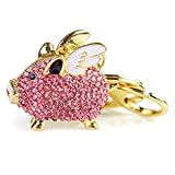 Pig Keychain,Cute Keychain Accessories for Women,Pink Flying Pig Gift for Pig Lovers, Crystals Key Decoration for Girls