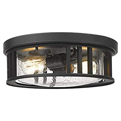 FEMILA 2-Light Flush Mount Ceiling Light, 13inch Industrial Ceiling Light Fixture, Black Finish with Seeded Glass, 4FW17-F BK