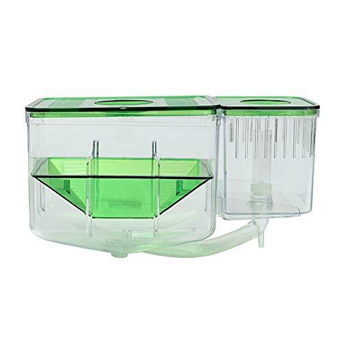 Matériaux écologiques ALEVINS Accessoires Elevage en plastique durable Safe Spawn incubateur réservoir Diviseur Aquarium Nursery automatique Circulating couvoir Ne pollère pas la qualité de l'eau