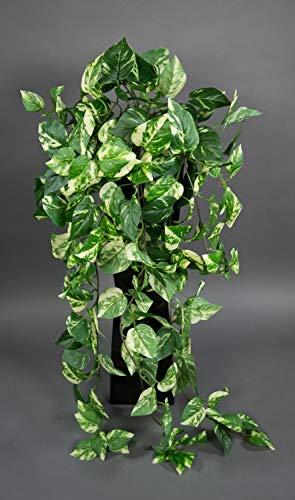 Seidenblumen Roß Photosranke 90cm grün-gelb PM künstliche Pflanzen Ranken Kunstrpflanzen künstlicher Photos