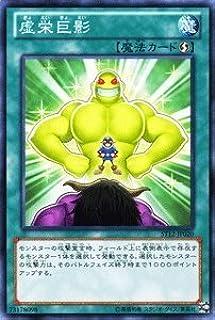 """Yu-Gi-Oh card [vanity] ST12-JP020-N """"Starter Deck 2012"""" (japan import)"""