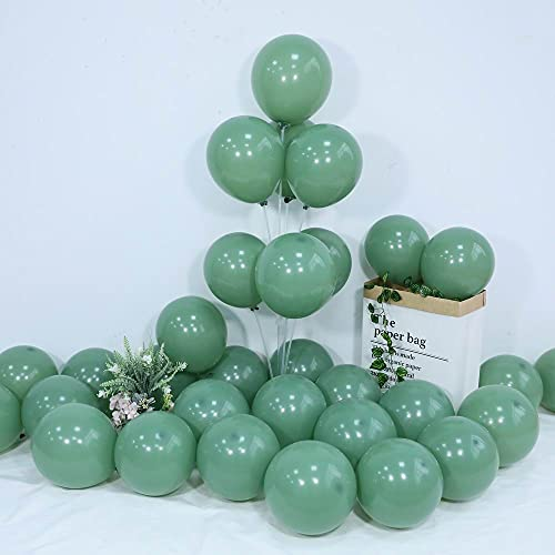 100pcs 10inch Eucalyptus Balloons Sage Green Party Balloons Avocado Green Balloons With Ribbon For Wedding Baby Shower Birthday Party Decorations