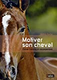 Motiver son cheval - Clicker et récompenses