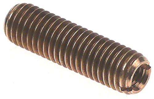 Santos Gewindebolzen für Saftpresse Nr28 für Motorwelle M10x1,5 M10x1,5 IG M6 Länge 35mm