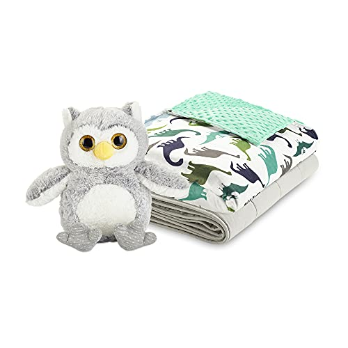 snoozzzy 5lb Weighted Blanket For kids Great For Sleep, Green Dinosaur Cover, Size 36X48