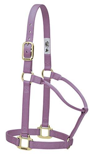 Weaver Leather Original Non-Adjustable Nylon Horse Halter, Average, Lavender