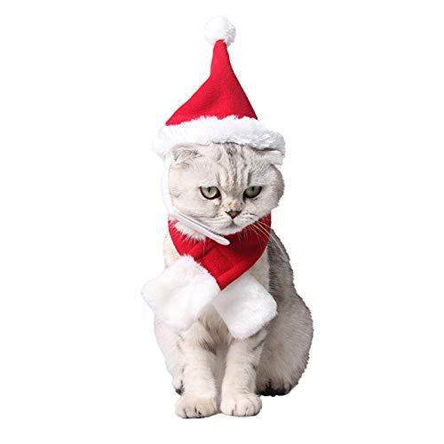 PEDOMUS kat kerstmuts en sjaal set kerstkostuum hoed voor kleine honden, rood