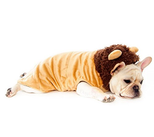 Selmai Chihuahua Vêtements Cosplay Costume de lion Manteau Trim à capuche