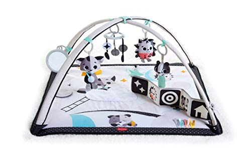 Best Buy!                     Tiny Love Magical Tales Gymini Activity Play Mat, Black & White