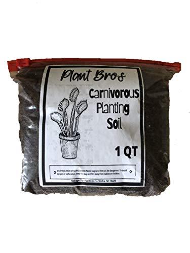 Oldworldtropicals Carnivorous Plant Soil Mix Perfect for Venus Fly Traps/Pitcher Plants 1 Quart