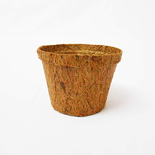 COIR POTS 10CM 20 PACK   100% BIODEGRADABLE POT TO REPLANT WITH NO TRANSPLANT SHOCK