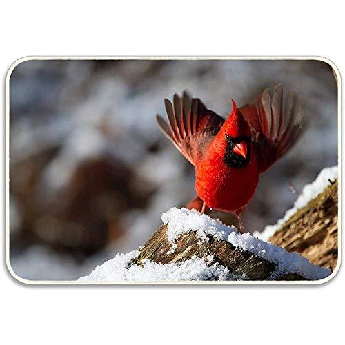 sodnz Alfombrilla Cardenal norteño Pájaro Macho Alfombra de Invierno para el hogar Alfombra Alfombrilla Alfombrilla de baño Alfombras de Dormitorio 40X60cm