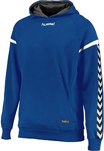 Hummel AUTH. Charge Poly Hoodie Sudadera con Capucha, Azul (True Blue), Large para Hombre