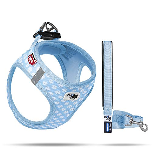 Curli Vest Geschirr Air-Mesh + Basic Leine, Skyblue-Circles