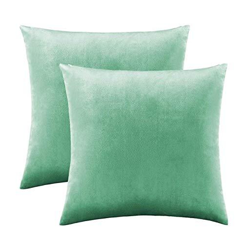 SDCVRE Kissenbezug 2 Packungen Gold dekorative Kissenbezüge Hüllen für Schlafsofa Couch Modern SolidHome Throw Kissenbezüge Silber, Blaugrün, 2 Packungen 50CM X 50CM