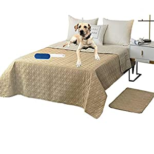 RBSC Home Waterproof Blanket Dog Bed Cover Non Slip Large Sofa Cover Reusable Incontinence Bed Underpads for Pets Dog Cat Kids with 1 Brush(96″ Beige)