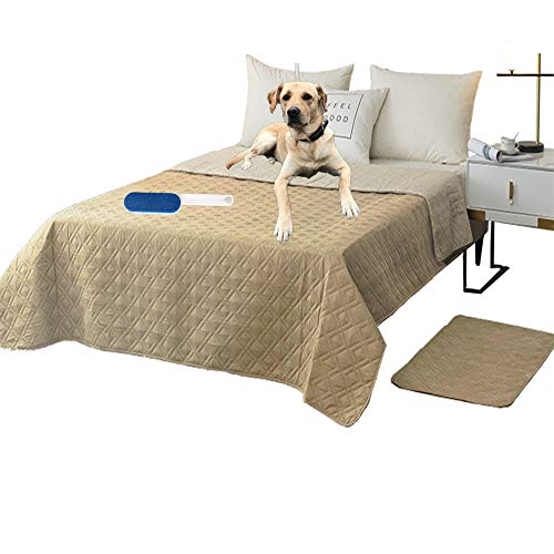 RBSC Home Waterproof Blanket Dog Bed Cover Non Slip Large Sofa Cover Reusable Incontinence Bed Underpads for Pets Dog Cat Kids with 1 Brush(52' Beige)