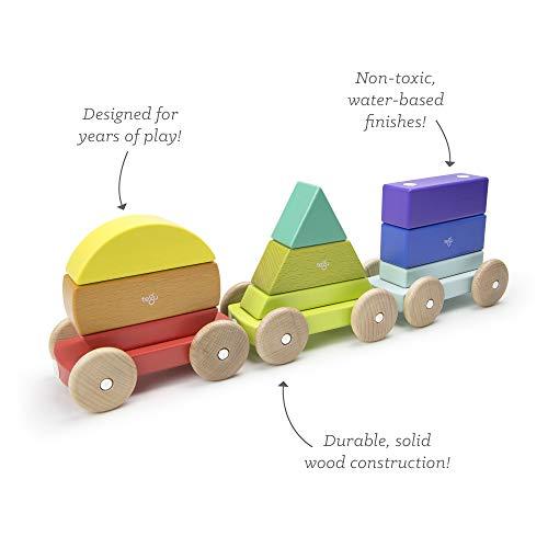 9 Piece Tegu Magnetic Shape Train Building Block Set, Rainbow