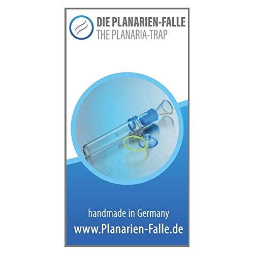 Die Planarien-Falle V2 (Set V2 incl ShrimpProtect)