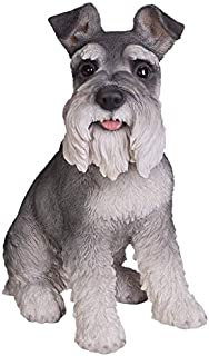 Pacific Trading Realistic Life Size Sitting Schnauzer Statue Home Decor Amazing Likeness