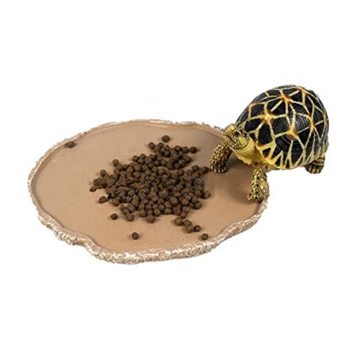 UEETEK Animali Domestici Piastra Rettile di Alimentazione Alimentazione Ciotola Vivarium Cibo Acqua Piatto Resina Ciotola per Turtle Gecko Serpente Animali Allevamento Vassoio