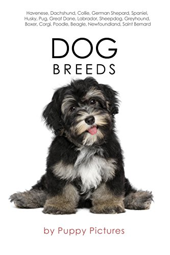 Dog Breeds: Havenese, Dachshund, Collie, German Shepard, Spaniel, Husky, Pug, Great Dane,...
