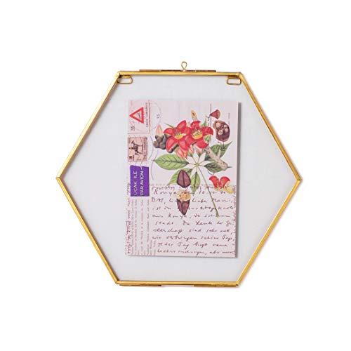 NCYP Piccola cornice in vetro esagonale in ottone per fiori pressati, fiori secchi, poster, doppio vetro, telaio galleggiante, solo telaio in vetro