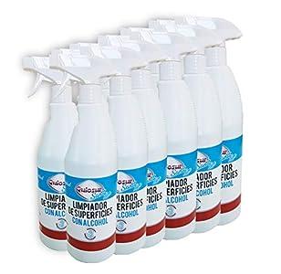 Sanit. Limpiador alcohólico de superficies. Caja 12 botellas 750 ml con pulverizador