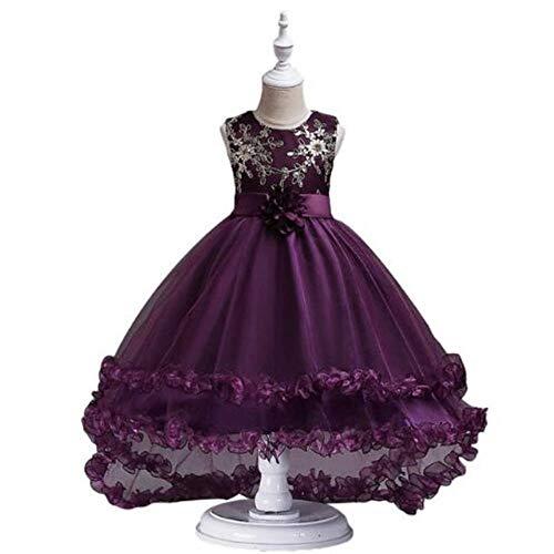 YEZIB Vestido de niña, Lentejuelas de Cola de Show de Pasarela para niños de 3-13 años de Edad, Vestido de Princesa Bordado (Color : Gray, Size : 160cm)