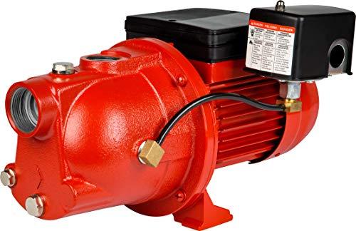 Red Lion RL-SWJ75 97080701 115/230V 3/4-HP 12.2-GPM Cast Iron Shallow Well Jet Pump,...
