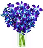 eflowerwholesale Fresh Cut Blue Orchid with custom printed ribbons(eflowerwholesale logo) (10 Stems Orchid with Vase)