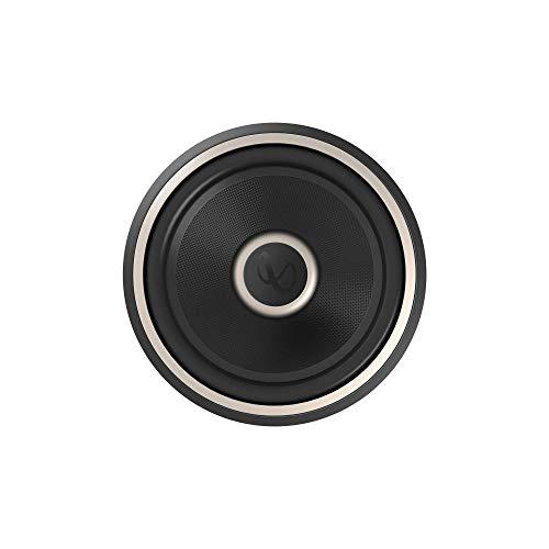 Infinity 1200W Car Audio Subwoofer (12-inch)
