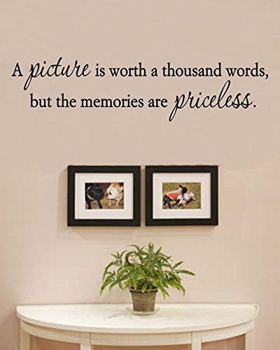 A Picture is Worth a Thousand Words, but The Memories are pricesless. Vinyl Wall Decals Quotes Sayings Words Art Decor Lettering Vinyl Wall Art Inspirational Uplifting