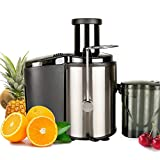 Electric Juice Extractor, Easy Clean Juicer Machines with Wide Mouth, 800W Stainless Steel Centrifugal Juicer with Juice Container, Blender for Fruit Vegetable, Anti-drip, Black