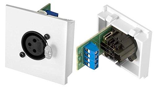 conec2, XLR-Buchse, XLR-Buchse, 50mm, conec2, CO2, 50mm, Serie: conec2clb50-xlr