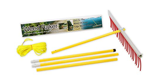 Jenlis Weed Raker, Weed & Grass Removal Tool for Lakes, Ponds & Beaches