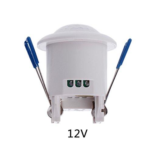 Siwetg PIR-bewegingssensor, 12 V, 360 graden, met bewegingsmelder, sensorschakelaar, gemonteerd aan het plafond