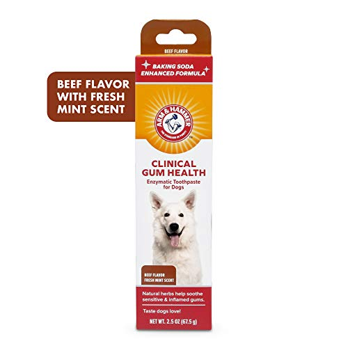 Arm & Hammer Enzymatic Toothpaste for Dogs