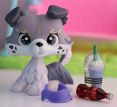 Judylovelps Custom Elk Collie, OOAK Gray Collie with Purple Eyes Spots on Face with lps Accessoires Kids Gift
