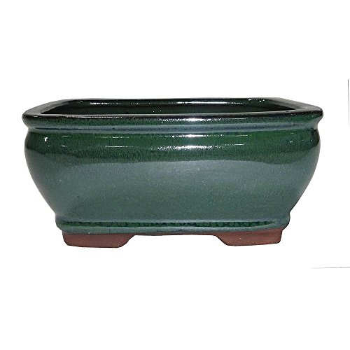 Brussel's 6.5' Rectangle Bonsai Glazed Ceramic Pot (Small, Forest Green)
