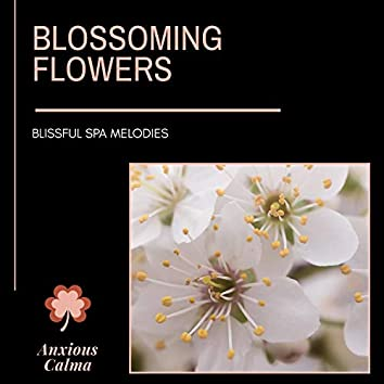 Blossoming Flowers - Blissful Spa Melodies