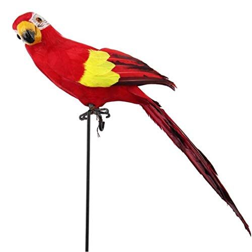 Zonfer Ornamento del Césped 45cm De Espuma Loro Pluma Modelo Animal Pájaro Rojo Decoración del Jardín