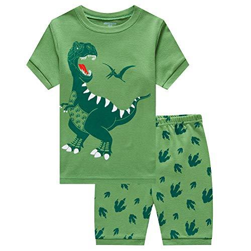 Kids Child Boys Cute Cartoon Dinosaur Long Sleeve Crewneck Pullover Tops T-shirt
