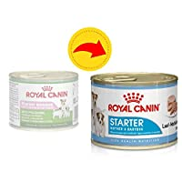 ROYAL CANIN Starter Mousse, Mother & Babydog Dog Food 6 X 195g and Little Gift For puppies: a helpful support during the weaning phase, from three to four weeks of age For pregnant or nursing bitches: their special nutritional requirements are met by...