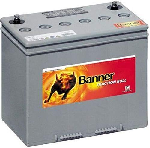 Banner Dry Bull DB 6/240 DIN Blei Gel Akku 6V 270AH (20h) Monobloc